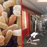 Kolonie bakterií ve fitness centrech